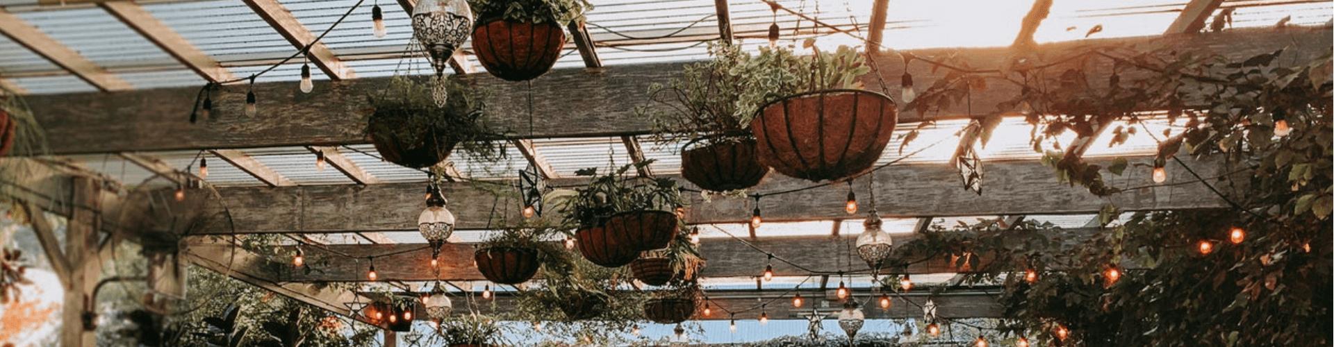 Garden Renovation in Winter