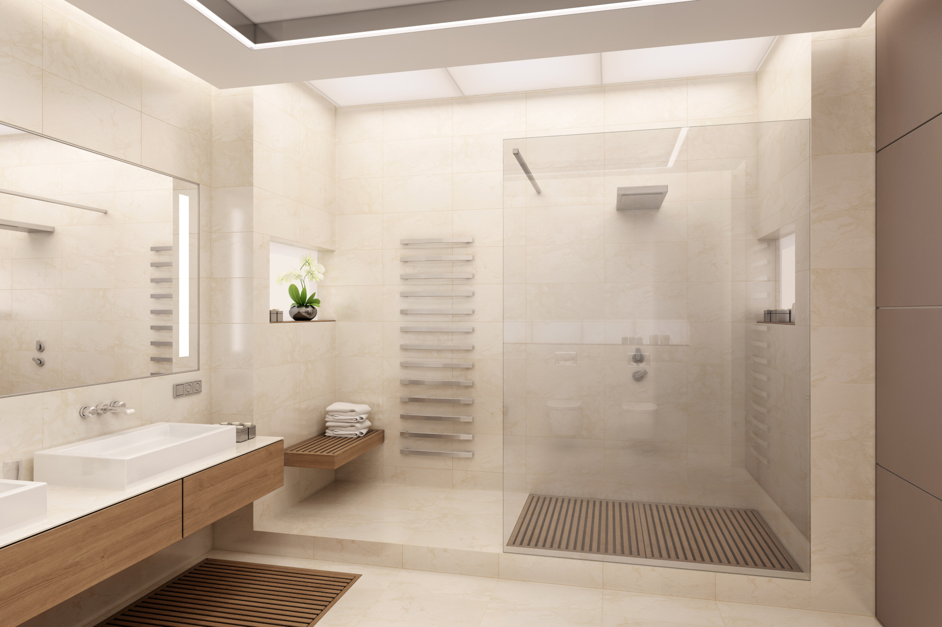 fancy bathroom and toilet and shower
